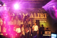 alibi (28)