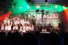 alibi (33)